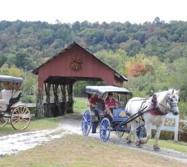 stowe horse carraig