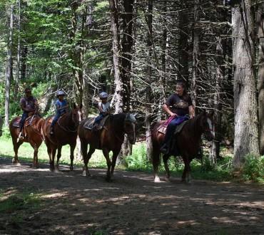 stowe horseback ridiing