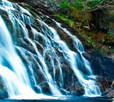 stowe moss glen falls